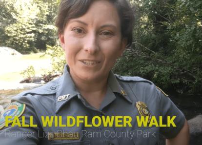 screenshot of virtual wildflower walk