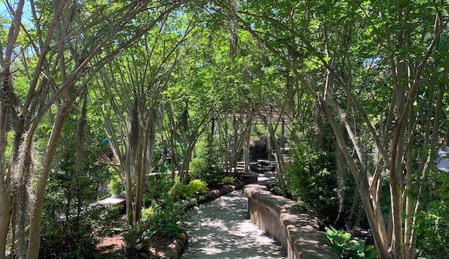 photo of walkway at oasis ranch