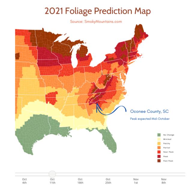 image of 2021 Foliage Prediction Map